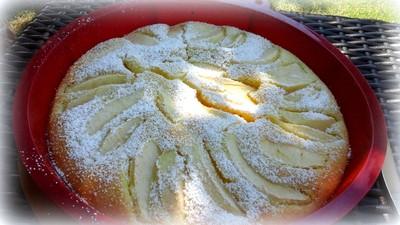 Blitz- Apfelkuchen Rezept