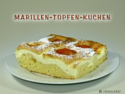 Marillen-Topfen-Kuchen Rezept