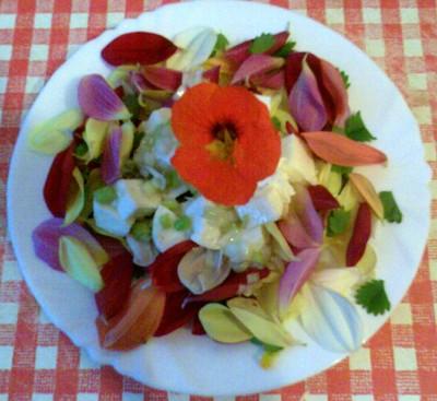 Dahliensalat mit Mozzarella Rezept