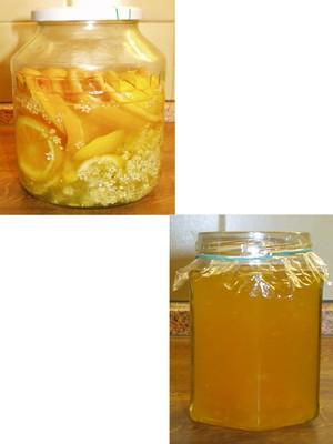 Gelee von Holunderblüten Rezept