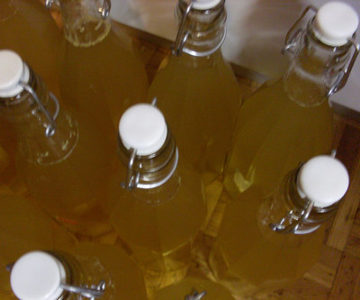 Holunderblüten - Sirup / Variante 2 Rezept