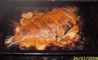 Karpfen aus dem Ofen  (Rácponty)  Rezept