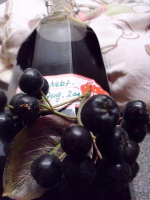 Aronia- Nektarinensaft Rezept