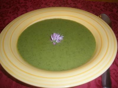 Rucolacreme Suppe Rezept