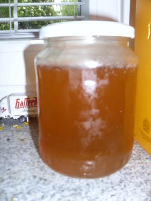 Holunderblütengelee mit Limettenscheiben Rezept