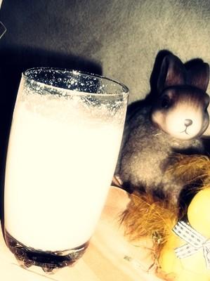 Hollerjoghurtshake Rezept