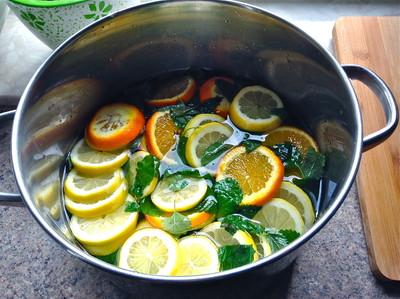 Zitronenmelissensirup Rezept