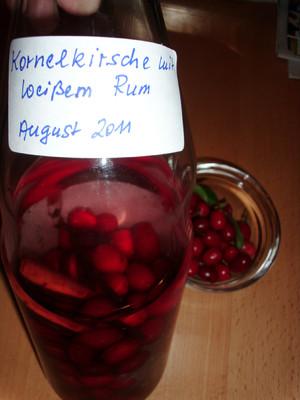 Kornelkirschen - Likör Rezept