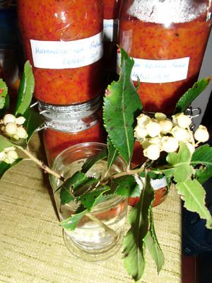 Marmelade von den Früchten des Erdbeerbaumes Rezept