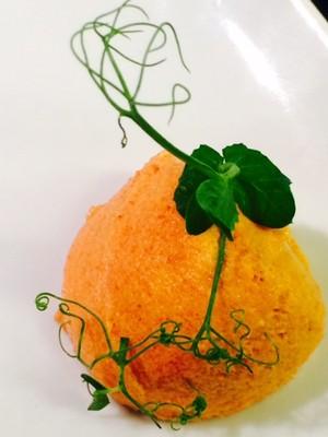 Tomaten Mousse Rezept