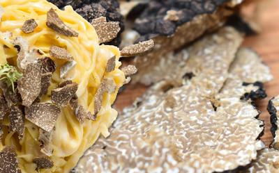 Pasta mit frischen Trüffeln Rezept